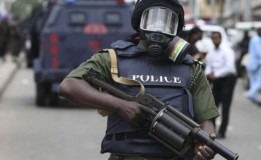 Police to restrict vehicular movement in Borno for LG poll