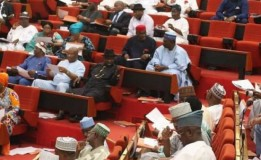 Senate introduces bill to create North West Development Commission
