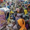 SEMA denies alleged gender-based violence cases against IDPs in Borno