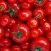 Ban on importation of tomato paste will fail without necessary structures – AFAN