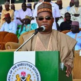 'How Borno contained Hepatitis E spread amongst IDPs'- Commissioner