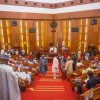 Senate asks INEC to declare results of June 12 1993 presidential election