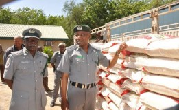 Customs Seize 765 Bags of Smuggled Rice in Katsina