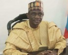 Environmental degradation: Yobe Gov, Buni goes tough on traditional rulers, others