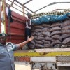 Customs seizes 300 bags of imported rice in Borno
