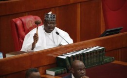 N'Assembly mulls passage of 2020 budget Nov 28