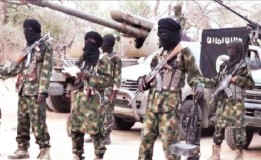 Boko Haram Kills Seven CJTF Operatives, Hunters in Borno
