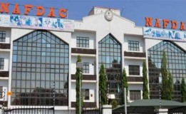 NAFDAC seals 3 shops in Borno over poisonous chemicals