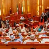 Stop foreign medical trips, Senate tells Buhari