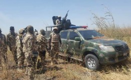 Troops eliminate 11 terrorists, recover arms in Borno
