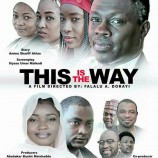 Kannywood English movie'This is the Way'pulls crowd in Kano
