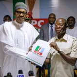 APC to PDP: You Are Hallucinating