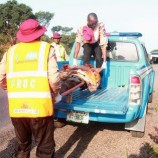 17 travellers burnt to death in Nasarawa auto crash