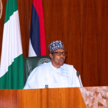 #ENDSARS: Nigerian youths have right to protest peacefully – Buhari